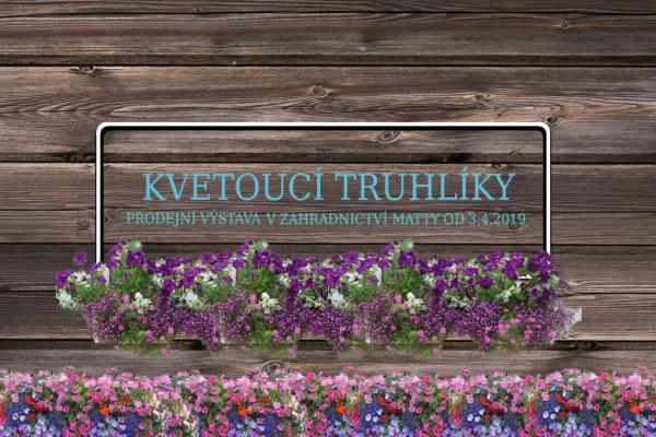 Prodejní výstava: Kvetoucí truhlíky