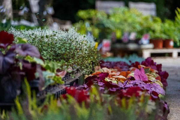 Podzimní zboží